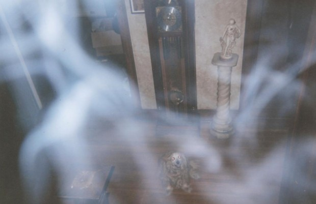 A smoky substance caught on film (and being looked at by the family dog) but not visible to the naked eye.